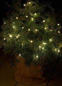 LED Lichterkette mit grünem Draht für outdoor