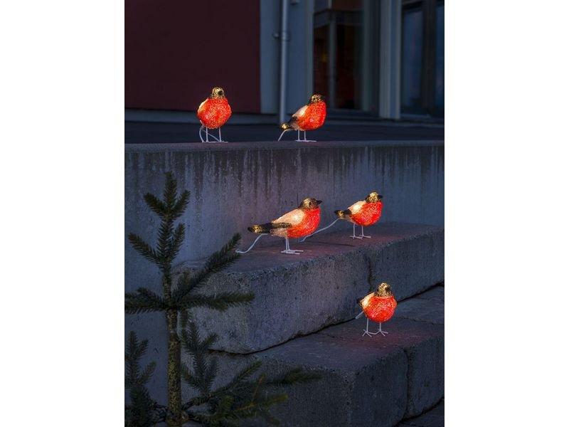 Vogel Set mit rotem Bauch und kaltweisses LED