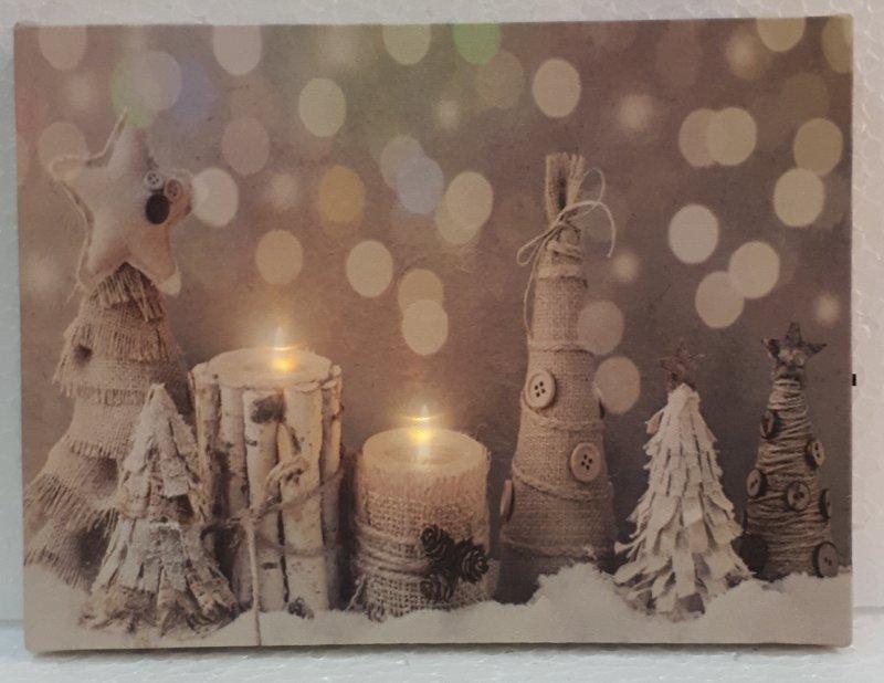 Bild mit LED Lichtern 20x15cm Birke und Jutte