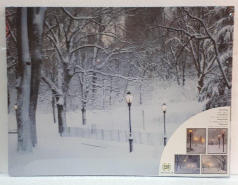 Bild mit LED Lichtern 40x30cm  Laternen mit viel Schnee