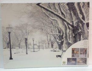 Bild mit LED Lichtern 40x30cm  Laternen mit grossen Bäumen