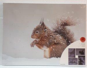 Bild mit LED Glasfaser 40x30cm  Eichhörnchen