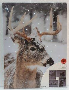 Bild mit LED Glasfaser 40x30cm  Hirsch braun