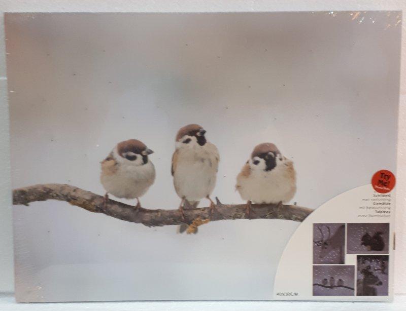 Bild mit LED Glasfaser 40x30cm Vögeli