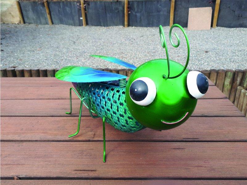 Libelle Solar mega gross